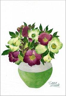 ポストカード「花瓶のクリスマスローズ」