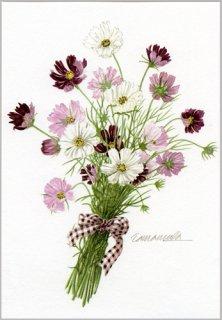 ポストカード「コスモスの花束」