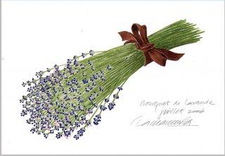 ポストカード「ラベンダーの花束2006」