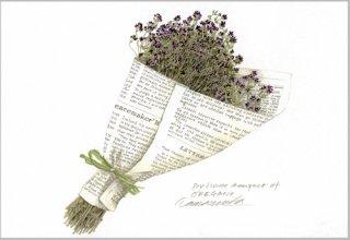 ポストカード「乾花(オレガノ)の花束」