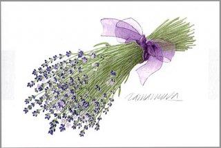 ポストカード「ラベンダーの花束 (紫のリボン)」