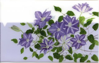 三つ折りフォルダー(薄紫のクレマチス)