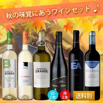 秋の味覚にあうワインセット 発売中