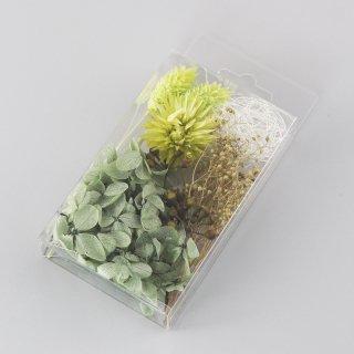 ハーバリウム用花材セットミニパック グリーン