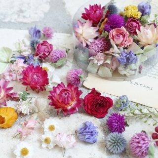 【花材】色とりどりの花材セット