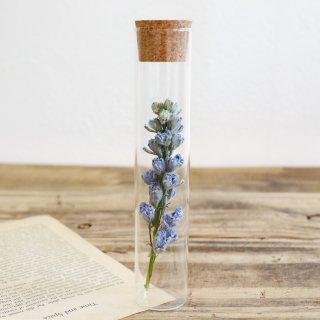 植物標本コルク瓶(デルフィニウム)