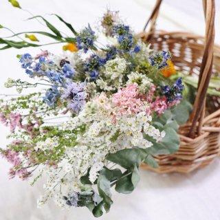 【再販】ドライフラワーセット 夏の小花