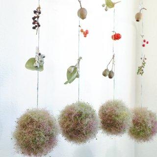 【再販】スモークツリーのボール飾り