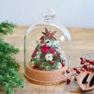 木の実のクリスマスツリードーム