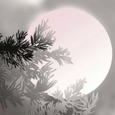 超撥水ふろしき ながれ 雪月花「月」