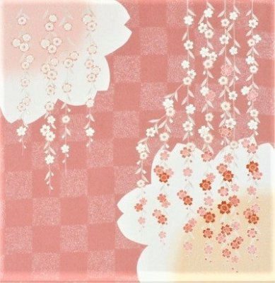 市松しだれ桜 ローズ(68cm)