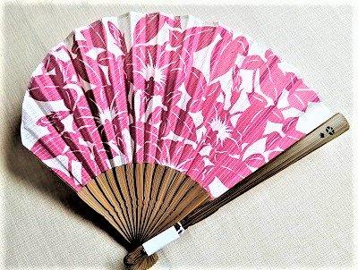 朝顔 ピンク