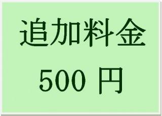 送料追加料金 500円