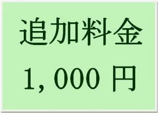 送料追加料金 1,000円