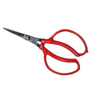 ブドウ鋏/Grape picking scissors