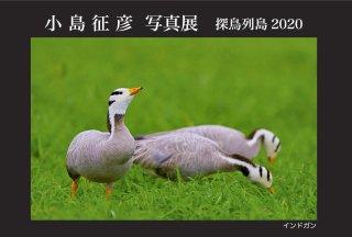 アパレルほか 小島征彦 写真展「探鳥列島2020」 開催のお知らせ