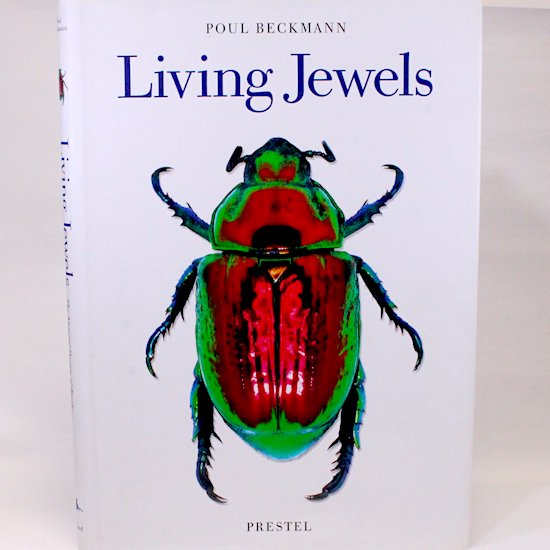 Living Jewels  The Natural Design of Beetles