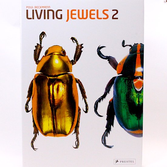 Living Jewels 2: The Magical Design of Beetles