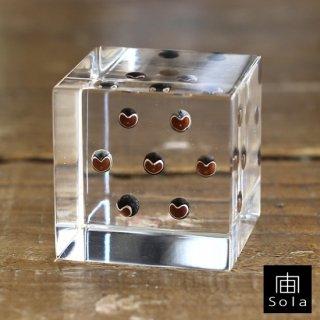 宙-sola- Sola cube フウセンカズラ