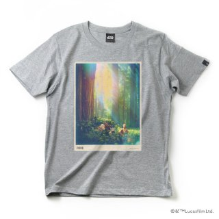 imp. STAR WARS T-SHIRT (ENDOR) ●サイズ:L (グレー) :IMP-A32-ENGY-L_T