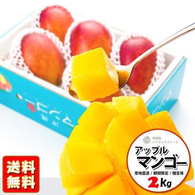 【今季受付終了】沖縄 西表島産 アップルマンゴー 2kg(4-7個)