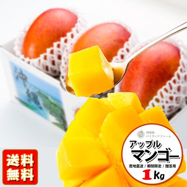 【今季受付終了】 沖縄 西表島産 アップルマンゴー 1kg(2-3個)