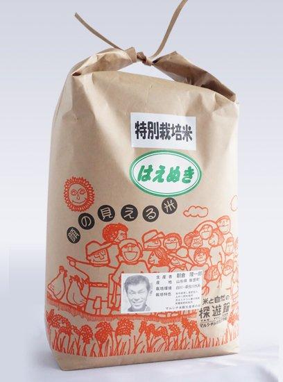 特別栽培米 はえぬき 5kg 30年産