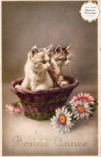 フランスアンティーク ポストカード Bonne Annee 子猫とマーガレット【普通郵便送料無料】