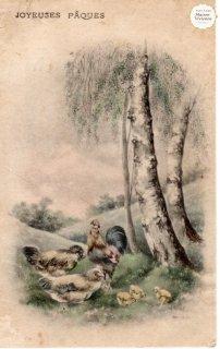 """フランスアンティーク イースターのポストカード """"鶏とひよこの親子が春の野でのんびりと""""【普通郵便送料無料】"""