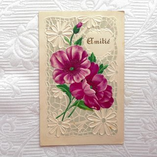 アンティーク・ポストカード 紫のアネモネとマーガレット【普通郵便送料無料】