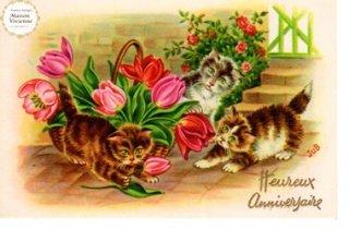 【未使用】フランスアンティーク ポストカード チューリップに興味津々な子猫たち【普通郵便送料無料】