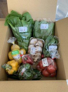 宮崎県産 季節の野菜詰め合わせ