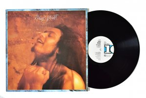 Maxi Priest & Caution / You're Safe /  マキシ・プリースト