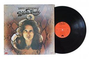 David Coverdale / Whitesnake / デヴィッド・カヴァーデイル