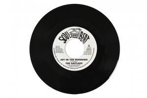 The Gaylads / Joy In The Morning / She Want It / ゲイラッズ