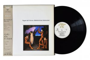 Penguin Cafe Orchestra / Broadcasting From Home / ペンギン・カフェ・オーケストラ