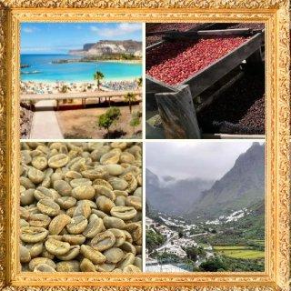 カナリア諸島 サンスーシ農園(Sサイズ)