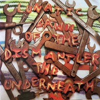 アンダーニース/ルナティック・ダウン・オブ・ザ・ディスマントゥル ANDERNEARH/Lunatic Dawn of the Dismantler