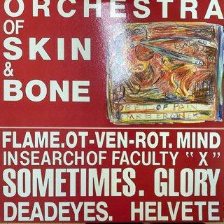オーケストラ・オブ・スキン&ボーン/オーケストラ・オブ・スキン&ボーン ORCHESTRA OF SKIN & BONE/ORCHESTRA OF SKIN & BONE