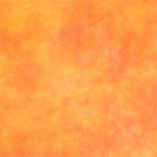 落水 黄・ピンク 80×53.5�