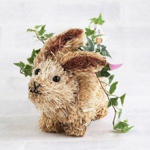 【観葉植物】敬老アニマルポタジェ - ウサギ(アイビー)