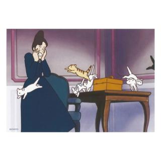 Y-41 ポストカード 猫騒動