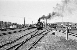 幌延駅 上り旭川行き 324レC5547蒸気機関車 1972年5月