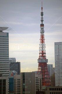 東京タワー遠望 平成25年
