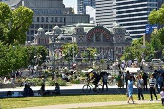 中之島公園 バラ園 大阪市中央公会堂
