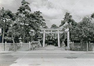 海神社 国道