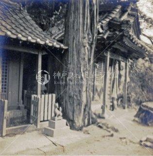 下畑乙姫神社