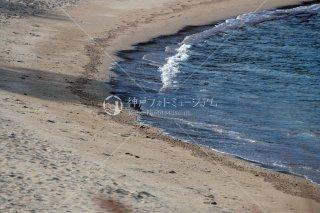 大浜海水浴場 洲本