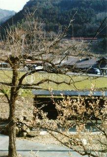 津和野 山口線 昭和57年 1982.3