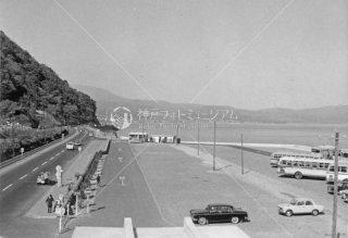 高崎山 小倉街道 昭和39 1964